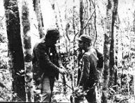Fidel and Che in the Sierra, the bush help against the aviation